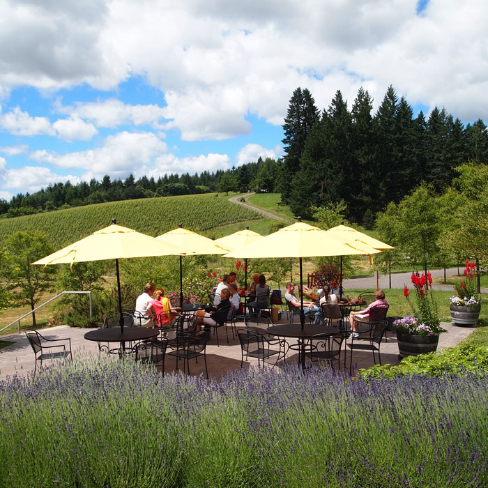 Lemelson Vineyards Carlton, Oregon