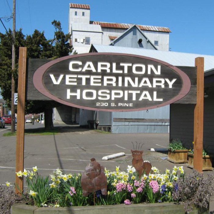 Carlton Veterinary Hospital Oregon